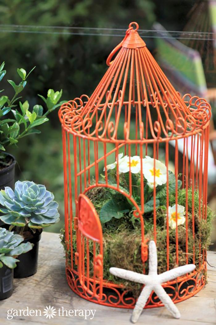 Birdcage Planters