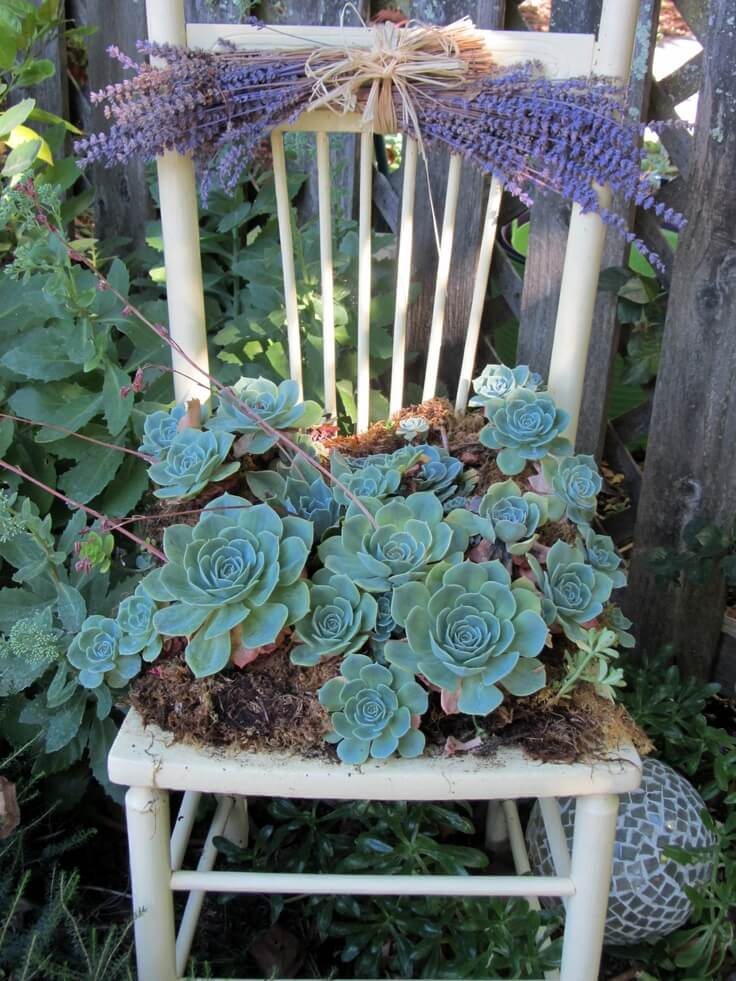 Easy Chair Planter with Succulents and Lavender