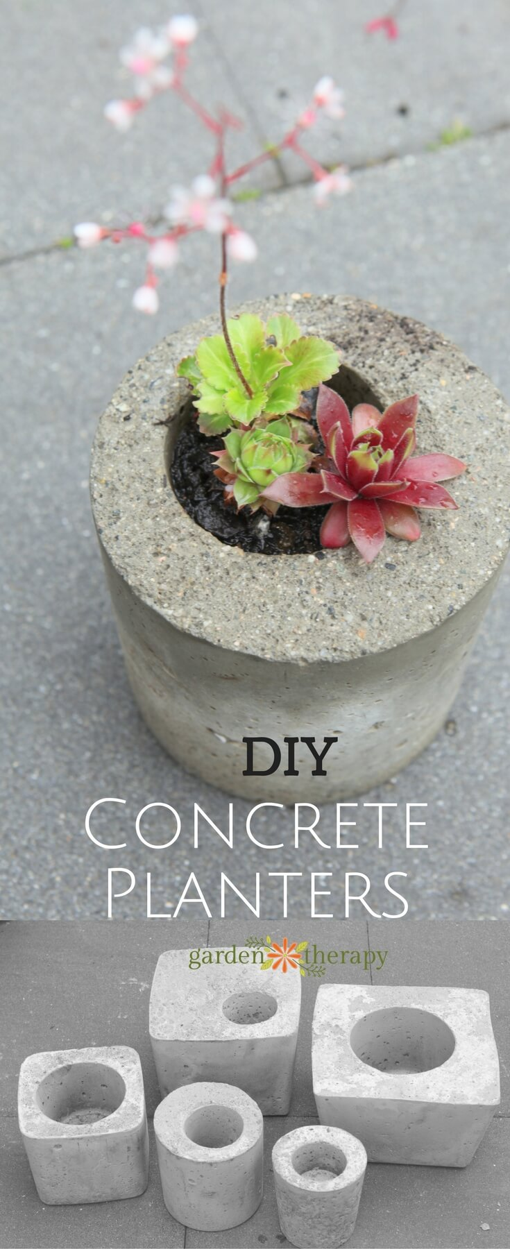 Mini DIY Backyard Concrete Planters