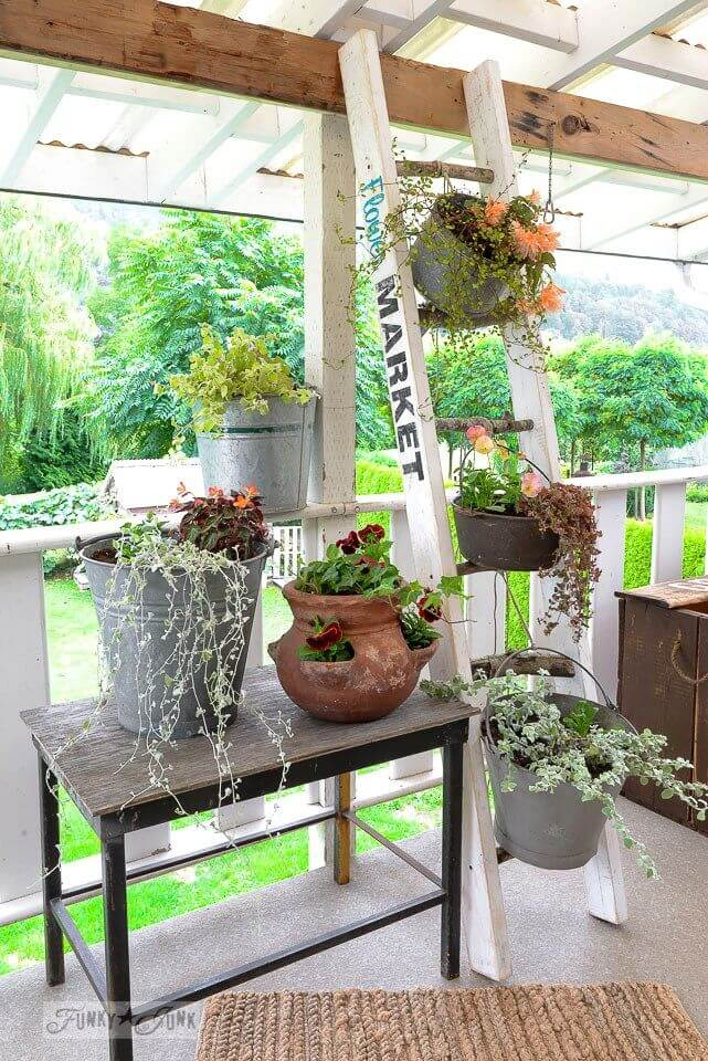 Rustic Potted Plant Porch Medley