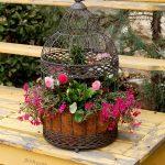 03-birdcage-planters-homebnc