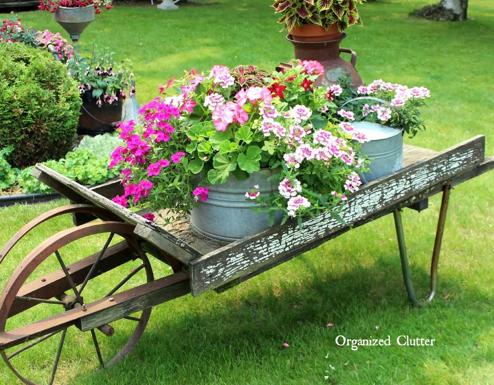 Wheelbarrow with Blooming Planters
