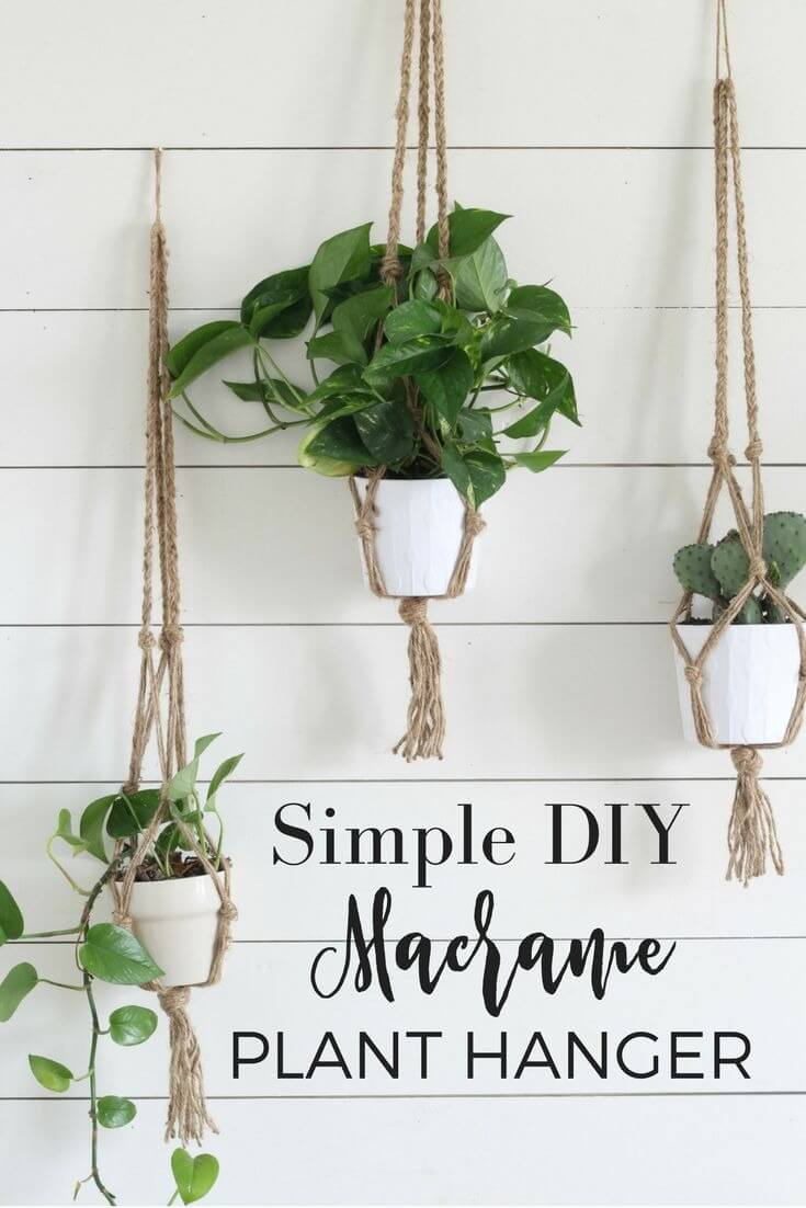 DIY Macrame Plant Holder Wall Hanging