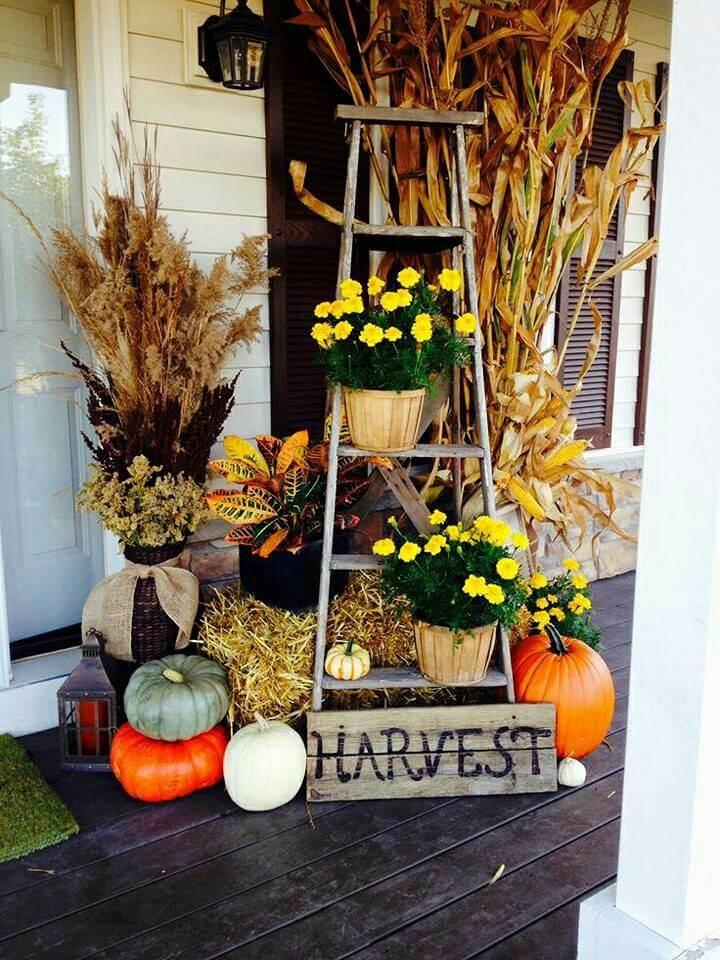 Autumn Plant Ladder Porch Display