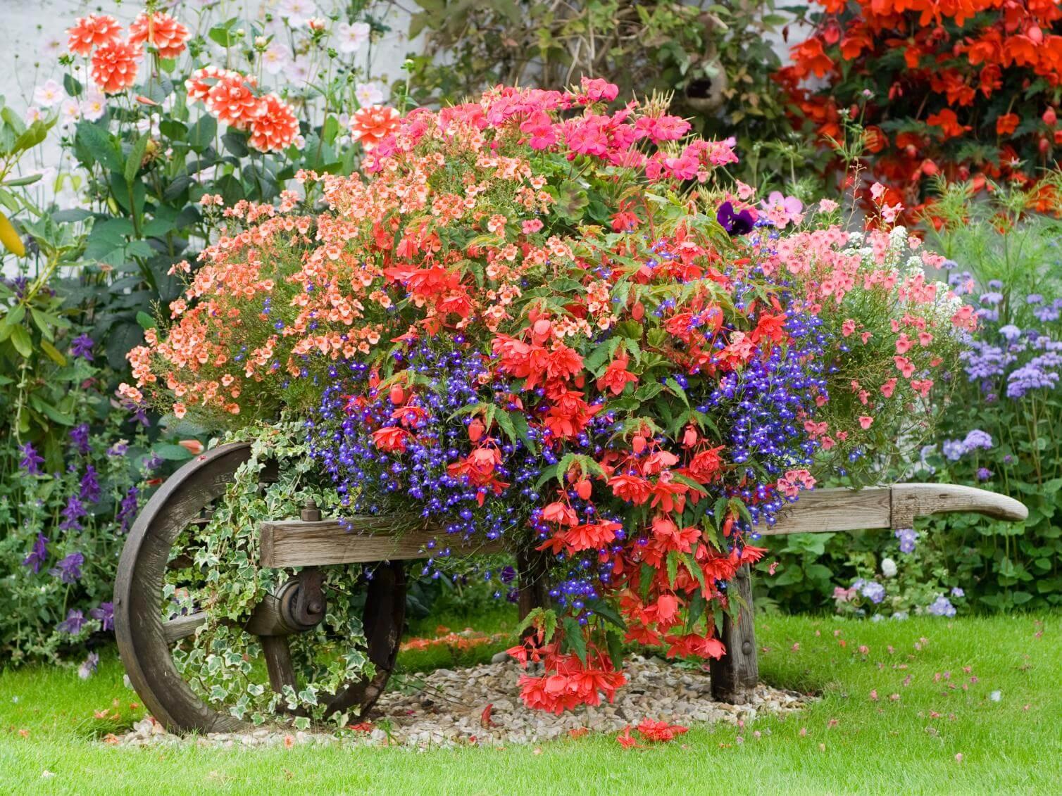 Cottage-Style Planted Wheelbarrow