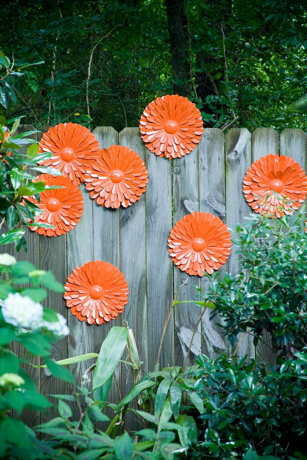 Brilliant Orange Floral Decorations on the Fence