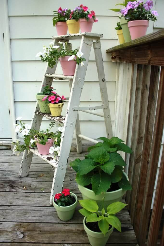Wooden Ladder With Potted Flowers