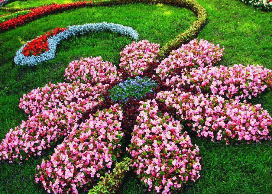 Flower Shaped Floral Garden Layout