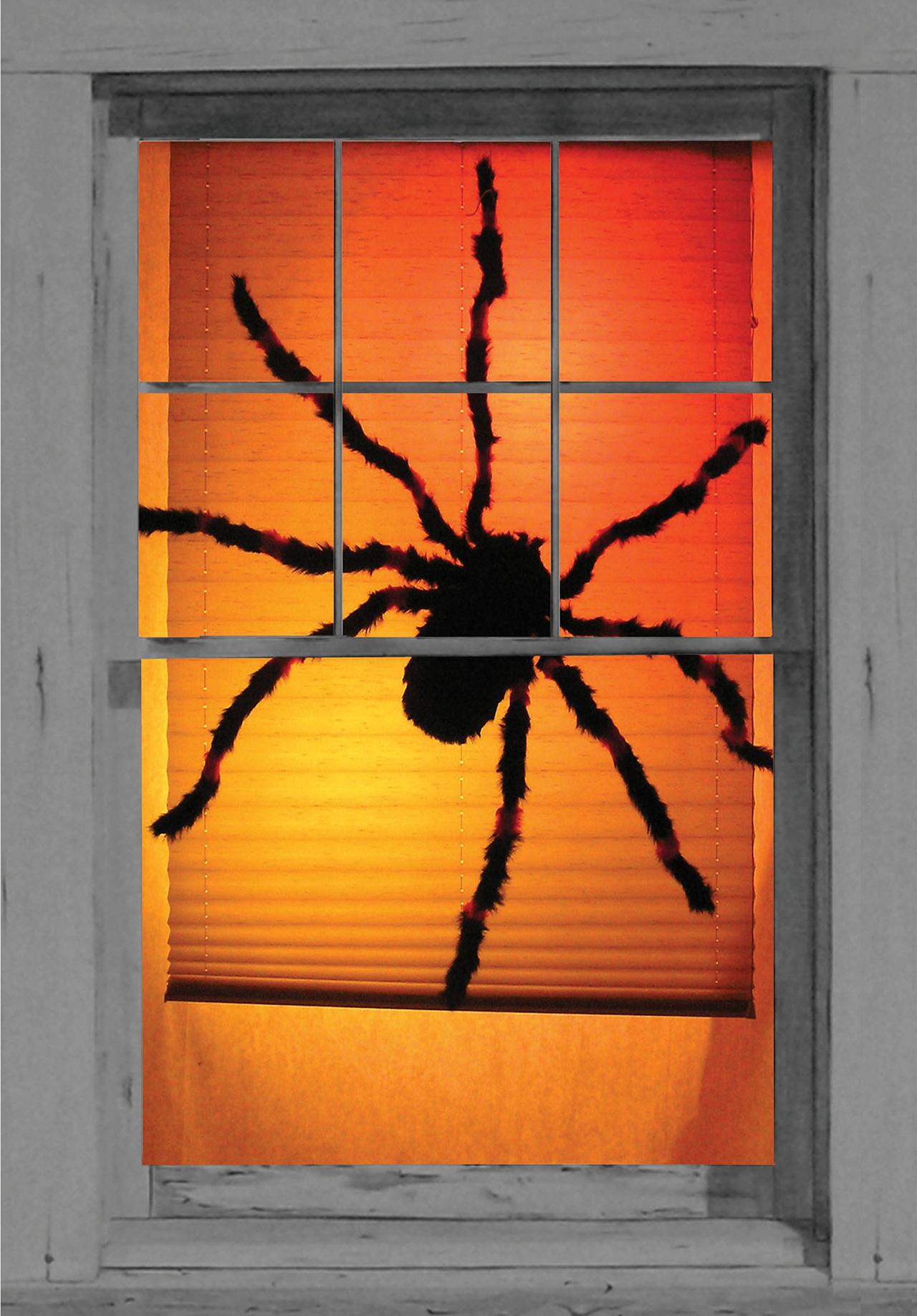 Tarantula Terror