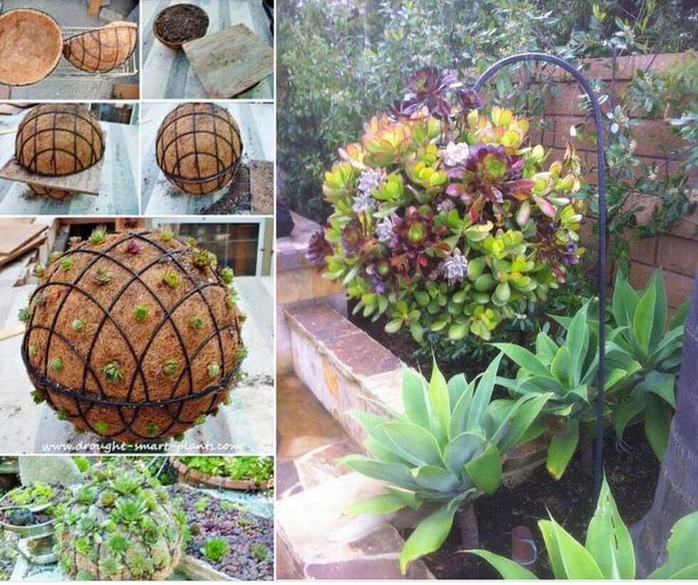 DIY Succulent Orb Hanging Planter