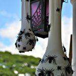 05-spider-sacs-homebnc