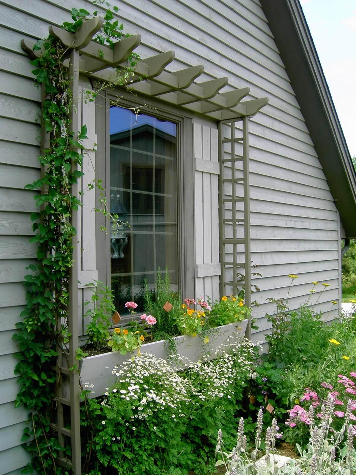 Window Flower Trough With Lattice Frame