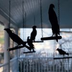 06-black-crow-halloween-decoration-homebnc