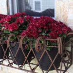 06-window-box-planter-ideas-homebnc