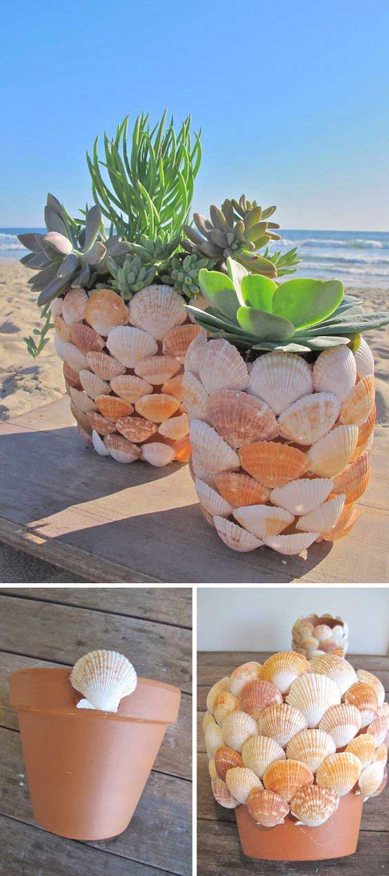 DIY Shell Project Ideas for Planters