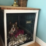 08-diy-pet-ideas-homebnc