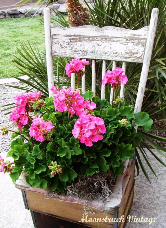 Shabby Chic Chair Flower Planter