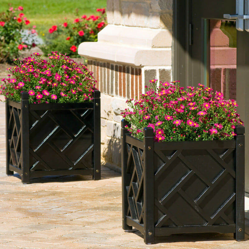 Bold Porch Planter Ideas with Pink Flowers
