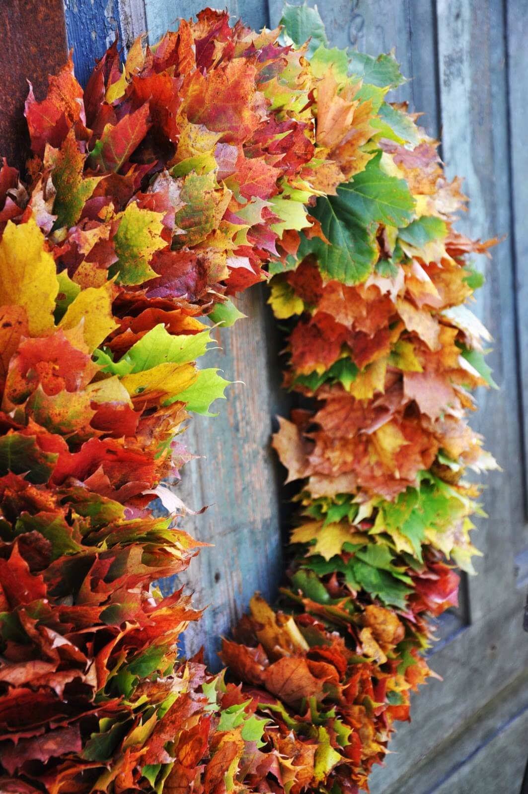 Showy Fall Leaves Front Door Wreath