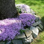 10-flower-bed-ideas-homebnc