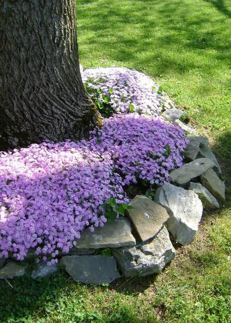 DIY Tree Flower Bed Tutorial