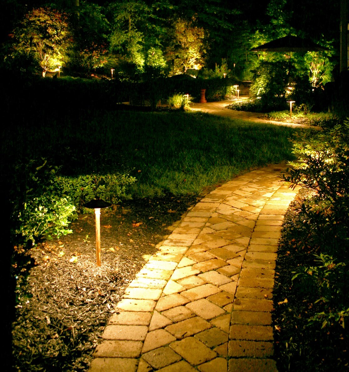 Bright Lights along the Path