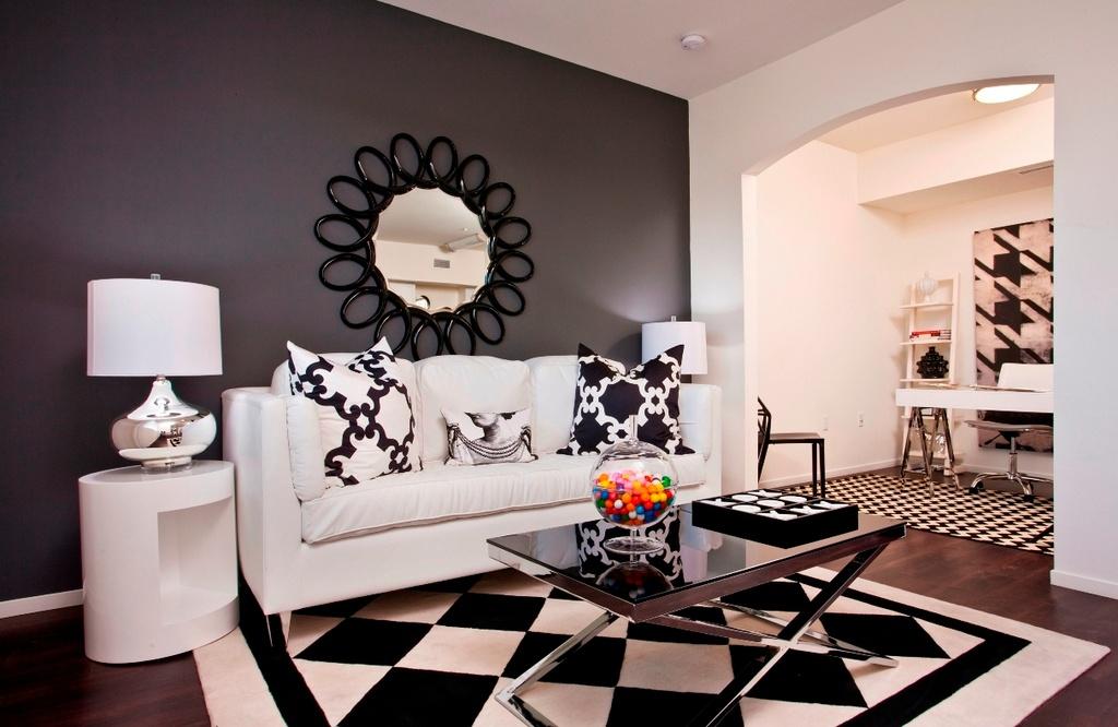 Black and White Living Room Internal Design
