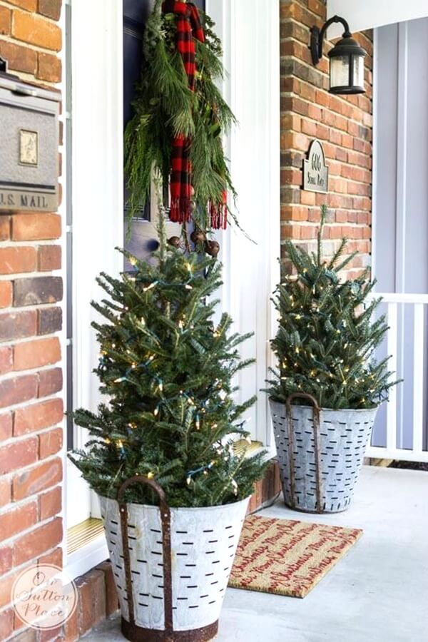 Festive Pine Tree Porch Planters
