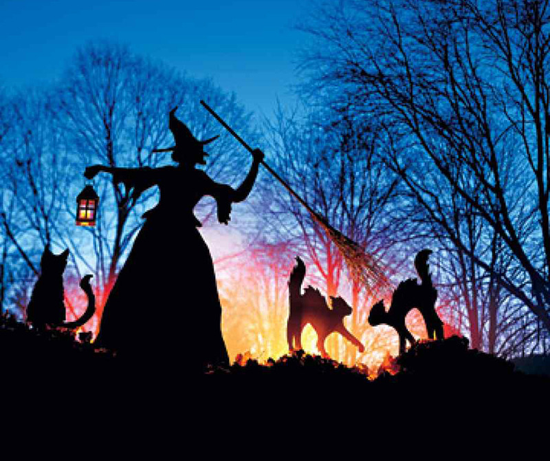 Witch and Cat Halloween Outdoor Decoration