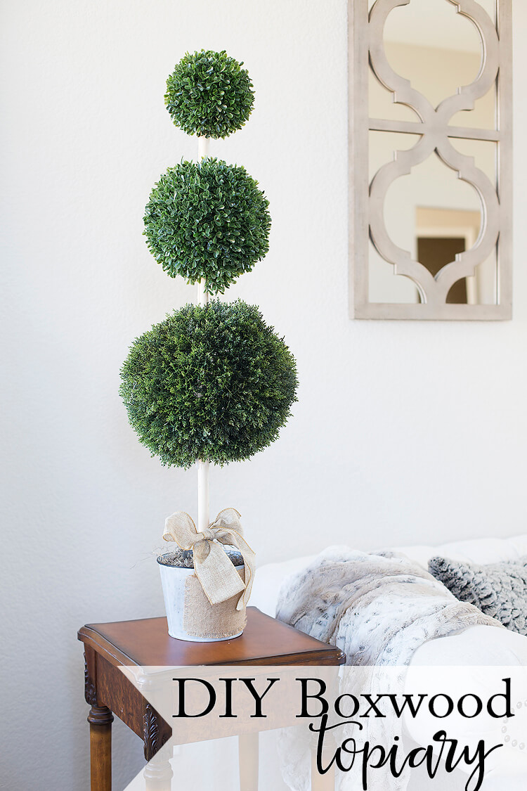 Make Your Own Boxwood Topiary