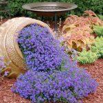 12-spilled-flower-pot-ideas-homebnc