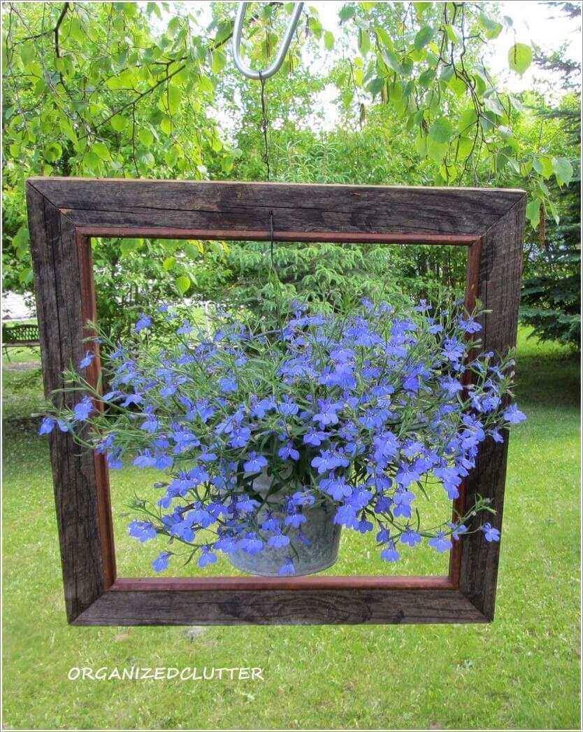 Perfectly Framed DIY Lobelia Planter
