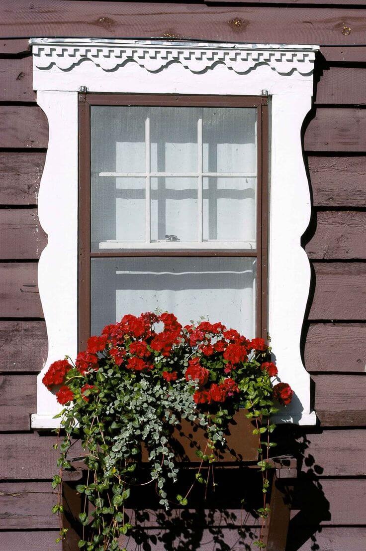 Invisible Flower Box in Decorative Window Frame