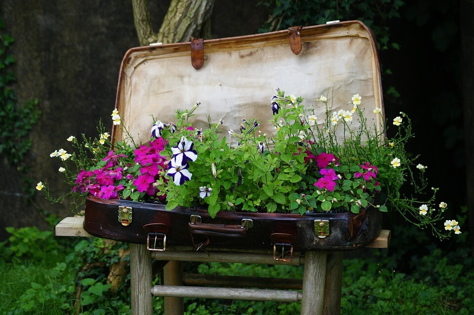 Vintage Suitcase Flower Planter Idea