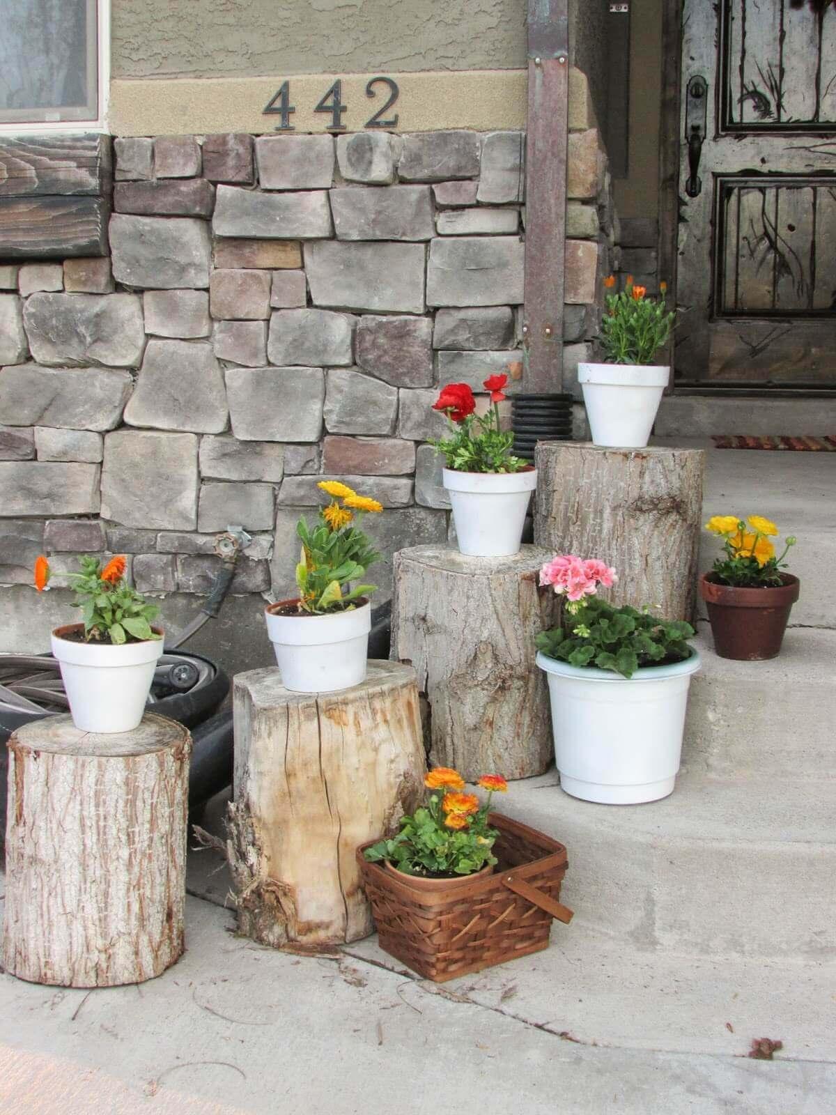 Plant Pots Set on Rustic Stumps