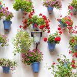 15-dress-a-bleak-wall-in-unforgettable-style-garden-homebnc