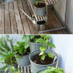 15-herb-garden-ideas-homebnc