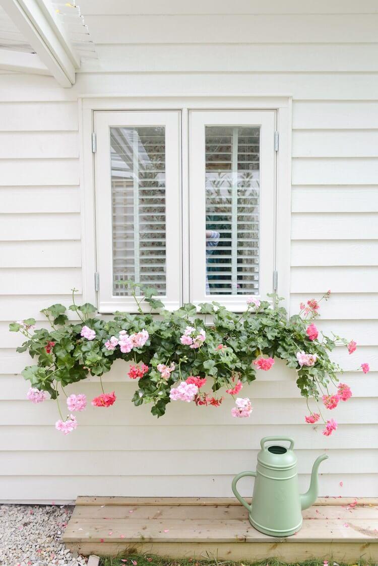 Subtle White Window Box With Cascading Flowers