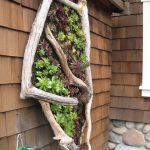 16-a-vertical-garden-idea-for-a-seaside-cottage-vertical-garden-homebnc
