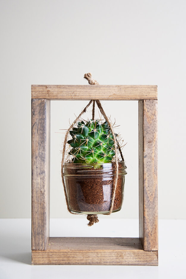 Box Frame with Hanging Cactus