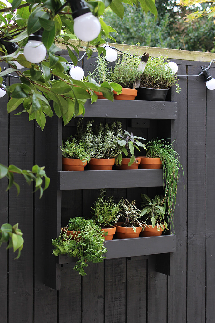 Wall Shelf with a Herb Garden