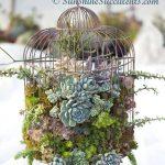 17-birdcage-planters-homebnc