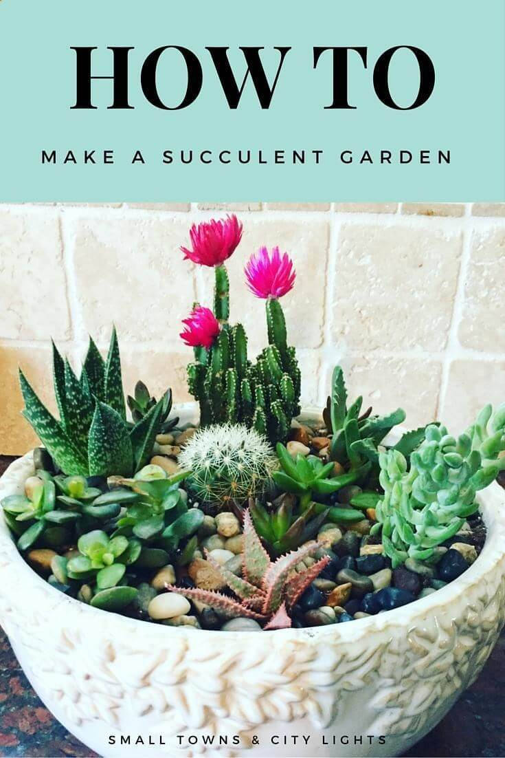 Delightful DIY Garden with Varying Plants