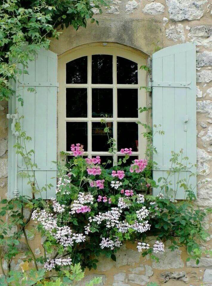 Overflowing Window Boxes with Tall Flowers
