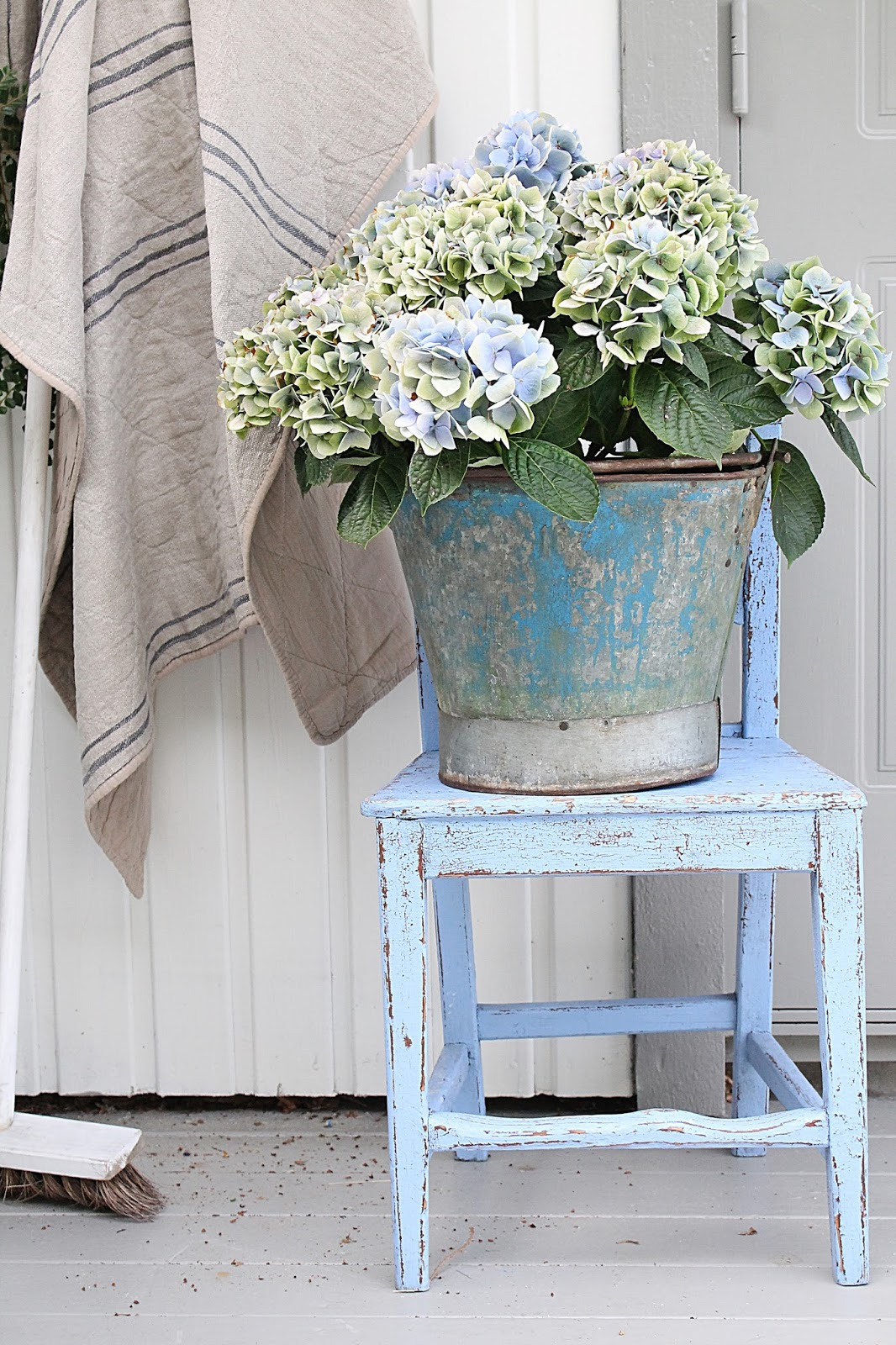Galvanized Bucket Planter