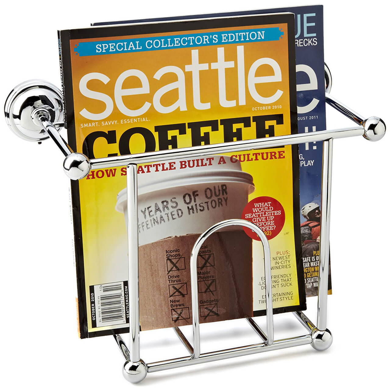 Wire Chrome Magazine Wall Rack