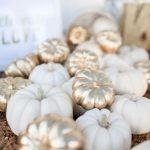 19-no-carve-pumpkin-decorating-ideas-homebnc
