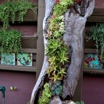 20-a-juxtaposition-of-old-and-new-vertical-gardens-homebnc