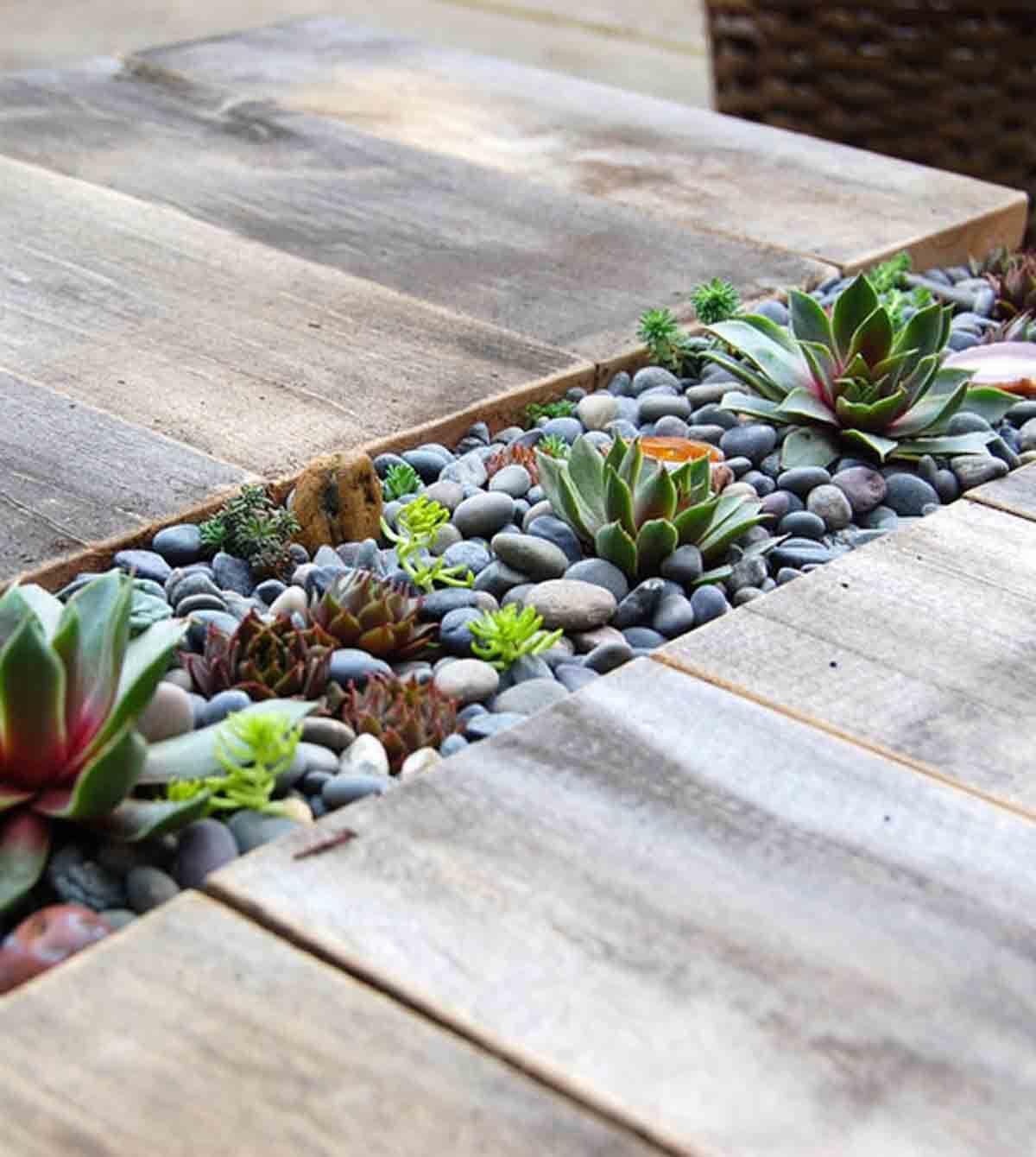 Built-In Rock Garden for Succulents