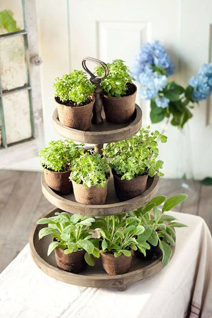 Tiered Natural Wood Herb Garden Trays